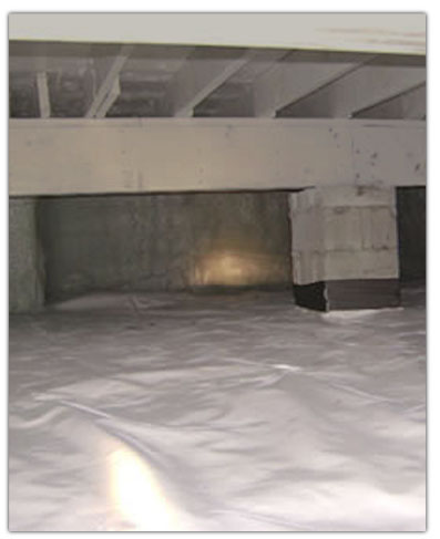 Action pest Control crawl space conditioning - moisture control